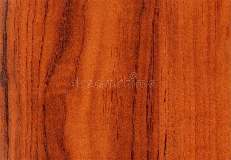 Struttura di legno della noce a priorità bassa fotografia stock libera da diritti