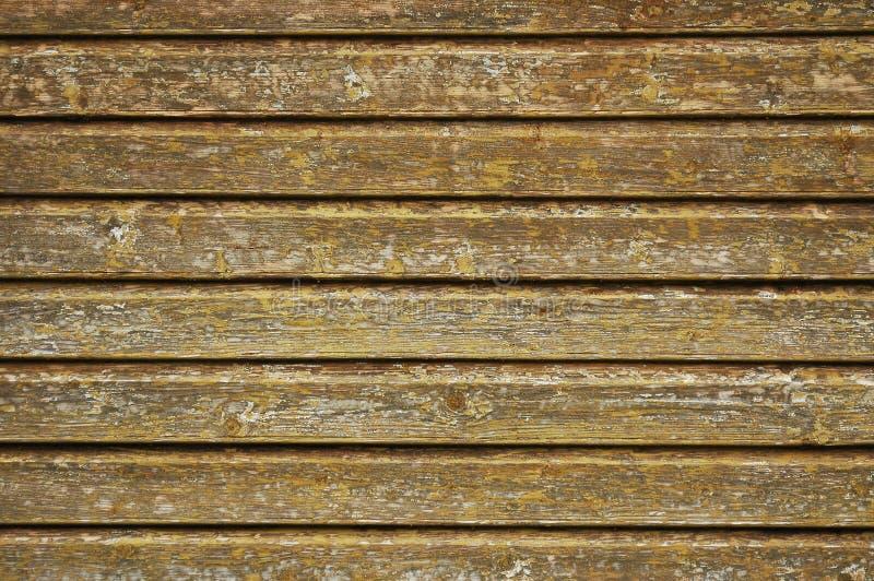 Struttura di legno della parete immagini stock