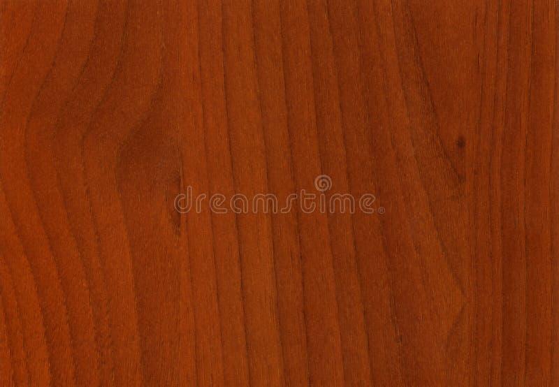 Struttura di legno di Artemide della noce del primo piano fotografia stock libera da diritti