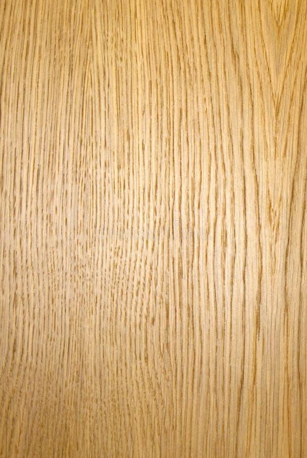 Struttura di legno di Durmast fotografia stock
