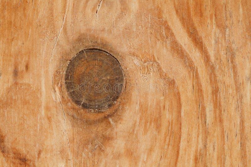 Struttura di legno e nodo per il modello ed il fondo fotografia stock