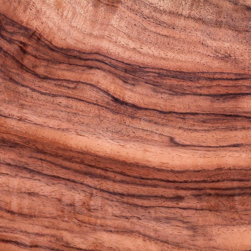 Struttura di legno esotica, scrittorio del legname, materiale naturale immagine stock libera da diritti