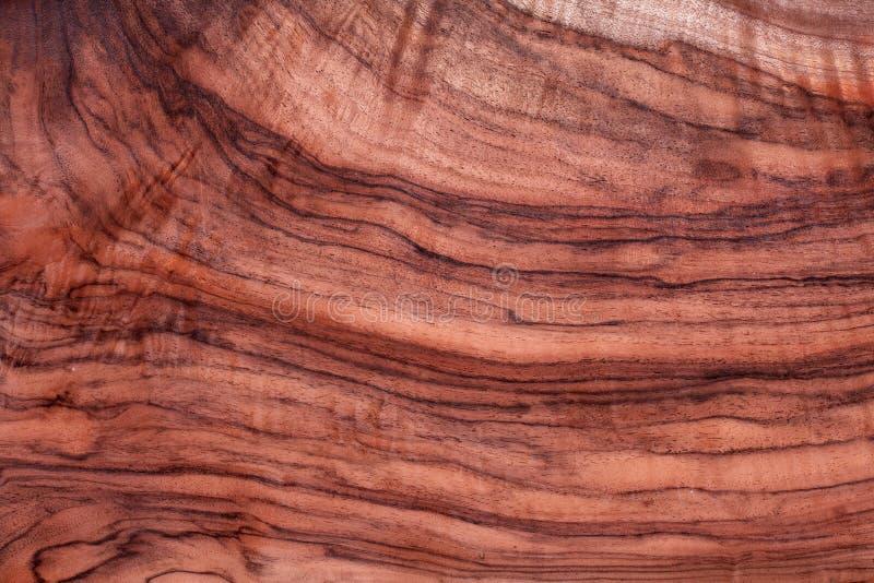 Struttura di legno esotica, scrittorio del legname, modello naturale naturale fotografie stock