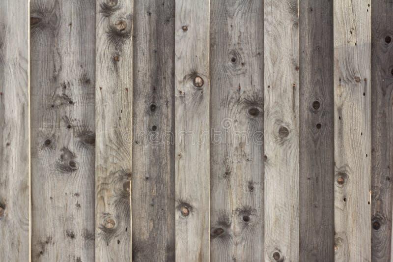 Struttura di legno, fondo dei bordi di legno dipinti con macchia immagine stock
