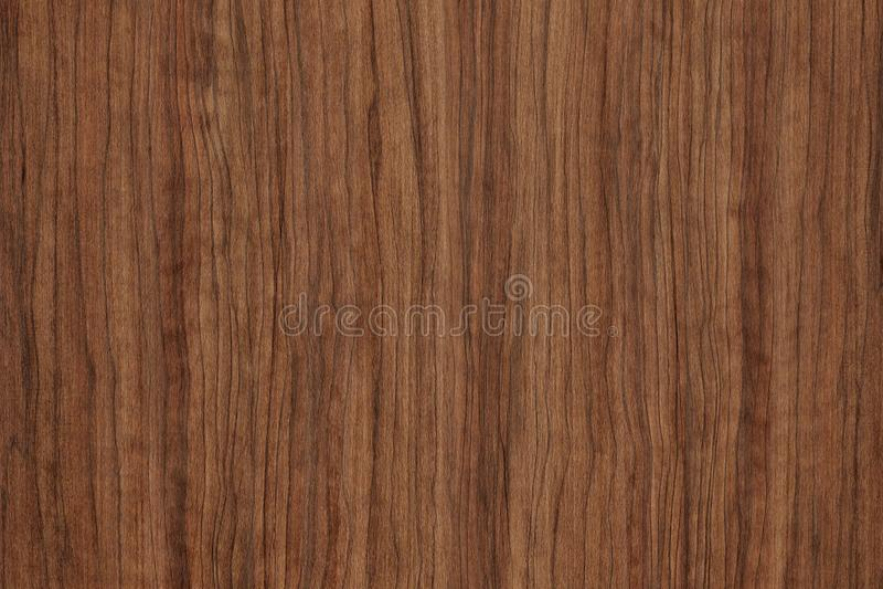 Struttura di legno di lerciume di Brown da usare come fondo Struttura di legno con il modello naturale fotografia stock