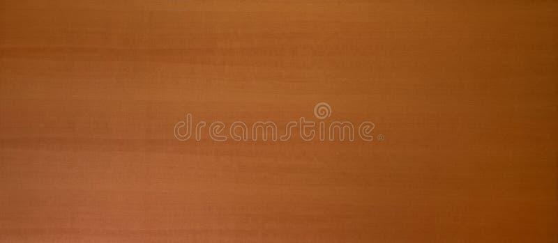Struttura di legno naturale del fondo del pannello immagini stock libere da diritti
