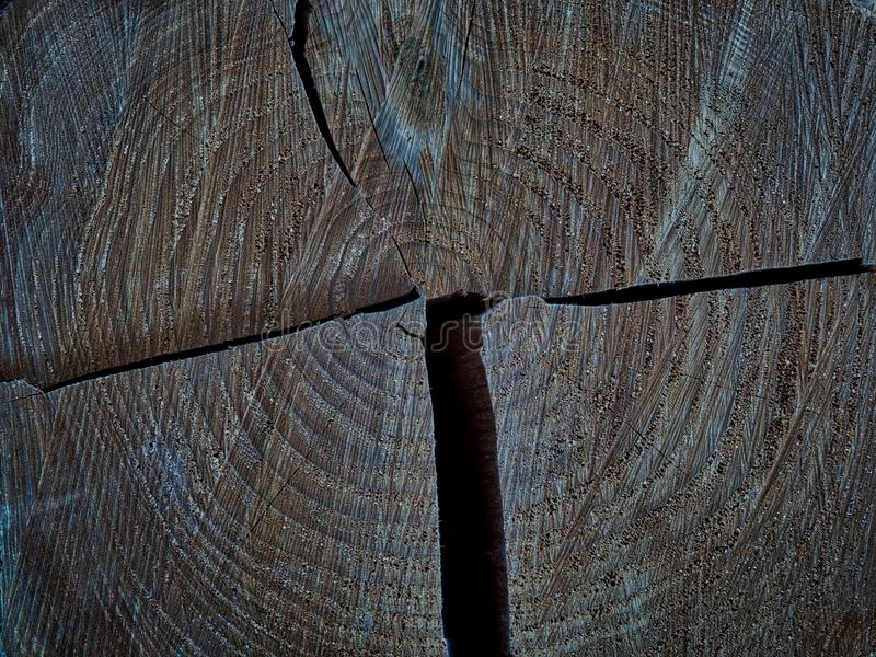 Struttura di legno naturale del grano immagine stock