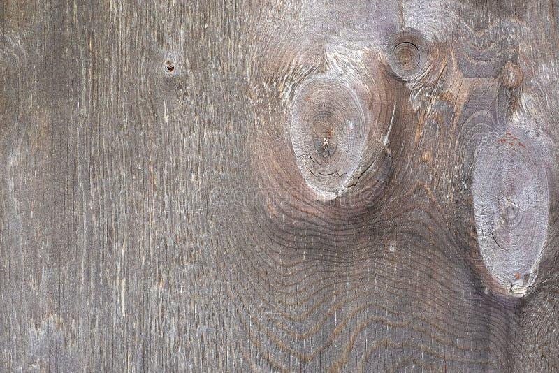 Struttura di legno naturale dipinta con pittura immagine stock