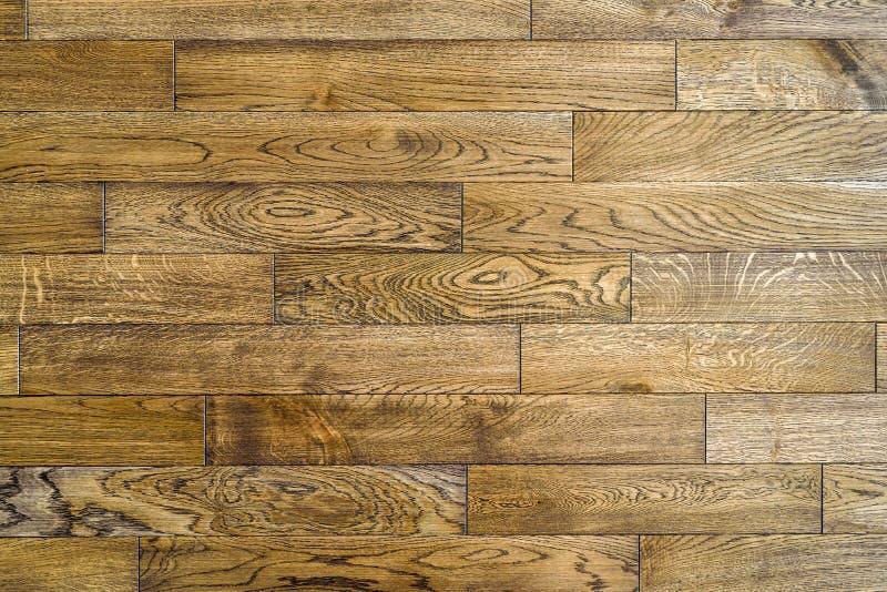 Struttura di legno senza cuciture del pavimento, struttura del pavimento di legno duro immagine stock