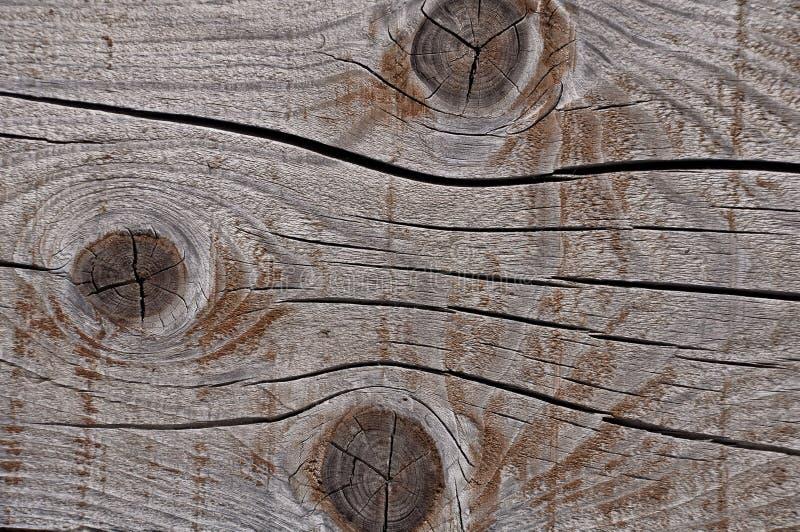 Struttura di legno stagionata grigia che mostra le crepe, i nodi e gli anelli di crescita fotografia stock