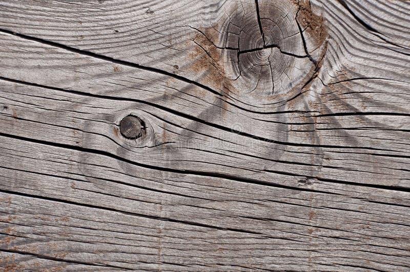 Struttura di legno stagionata grigia che mostra le crepe, i nodi e gli anelli di crescita immagine stock