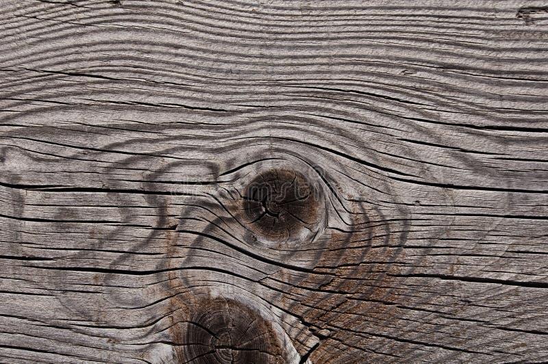 Struttura di legno stagionata grigia che mostra le crepe, i nodi e gli anelli di crescita fotografie stock libere da diritti