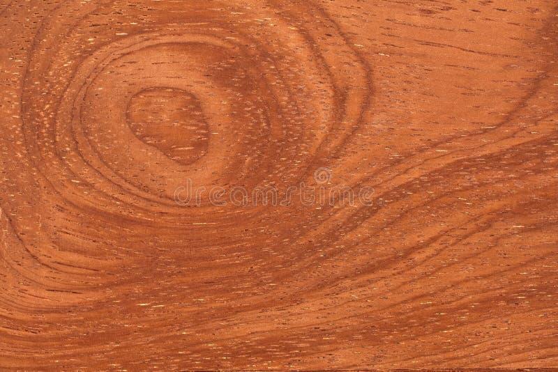 Struttura Di Legno Tropicale Immagine Stock - Immagine di vecchio, colore: 14055999