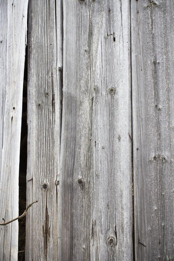 Struttura di legno vecchia della plancia immagini stock
