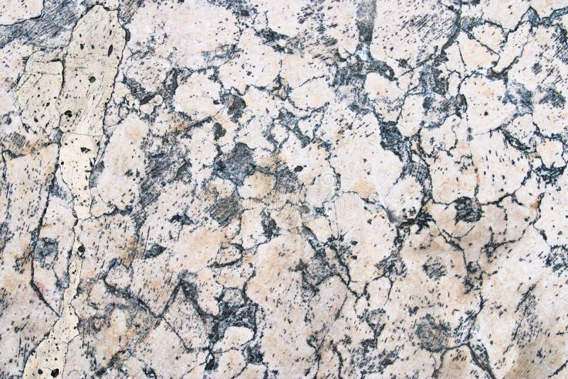 Struttura di marmo bianca dettagliata della lastra fotografie stock libere da diritti
