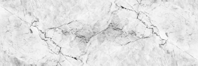 struttura di marmo bianca elegante orizzontale per il modello e il backgrou immagine stock