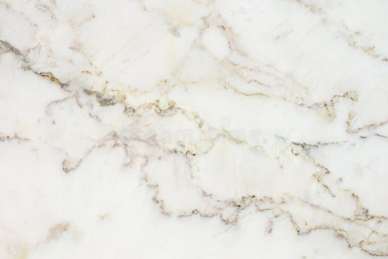 Struttura di marmo, fondo di marmo bianco fotografia stock libera da diritti