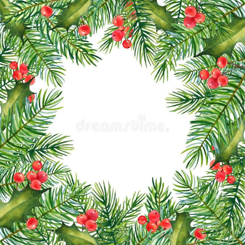 Struttura di Natale con i rami dell'acquerello di agrifoglio e del pino illustrazione vettoriale