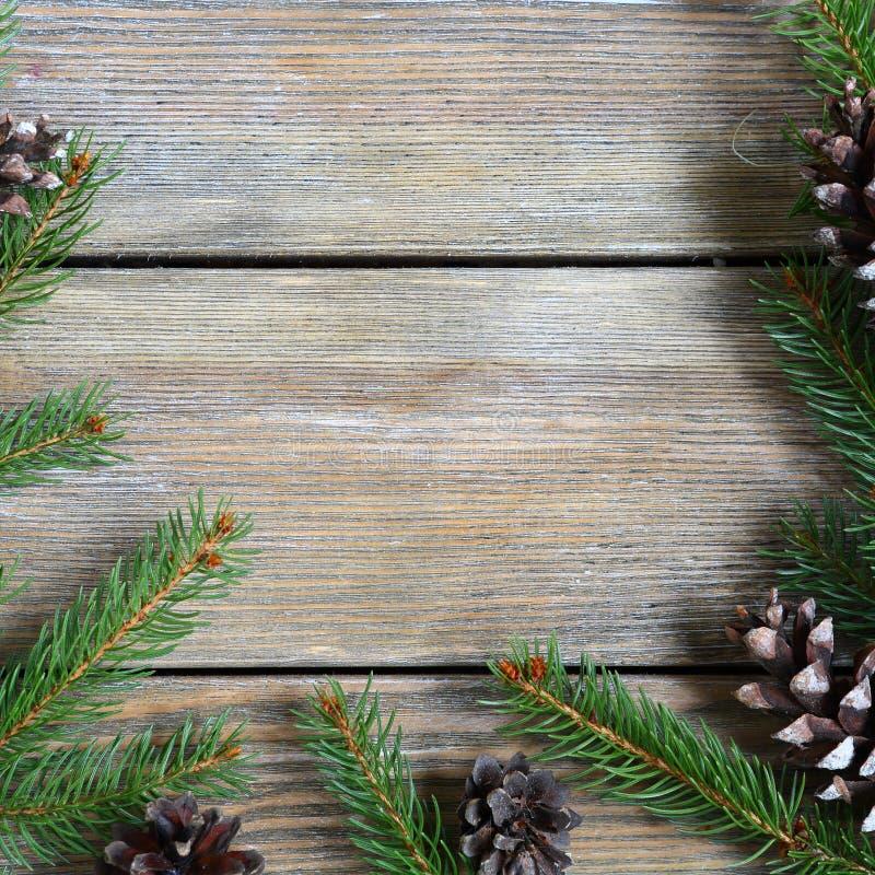 Struttura di natale con il ramo del pino e coni sui bordi di legno fotografia stock libera da diritti