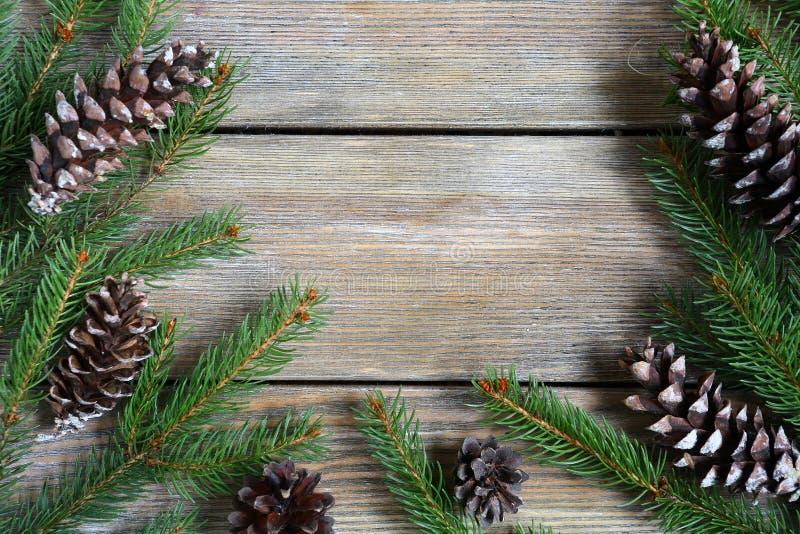 Struttura di natale con il ramo verde del pino con i coni sui bordi fotografia stock libera da diritti