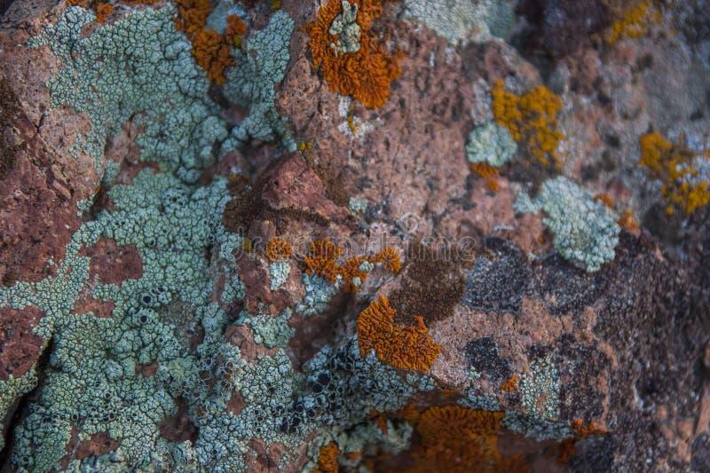 Struttura di pietra Fine dello sfondo naturale della roccia su fotografia stock