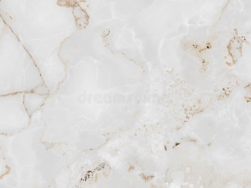 Struttura di pietra di marmo dettagliata con l'ornamento naturale sulla superficie fotografia stock libera da diritti