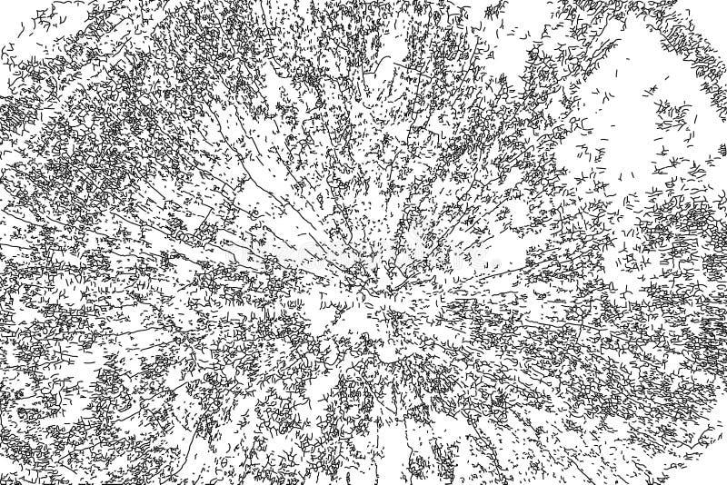Struttura di semitono afflitta di vettore di lerciume - fondo di legno del graffio del tronco Anelli di albero - in bianco e nero illustrazione di stock