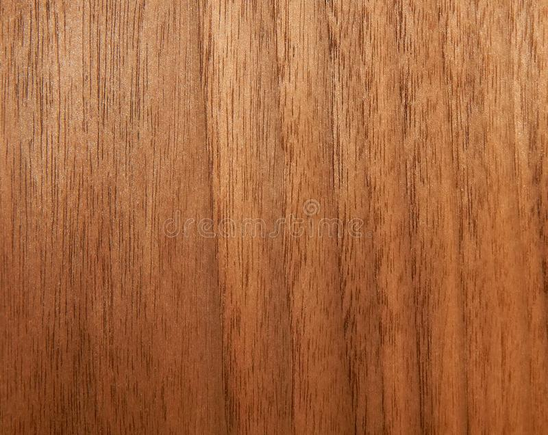 Struttura di una superficie di legno di una noce americana Impiallacciatura di legno per furnitur fotografia stock