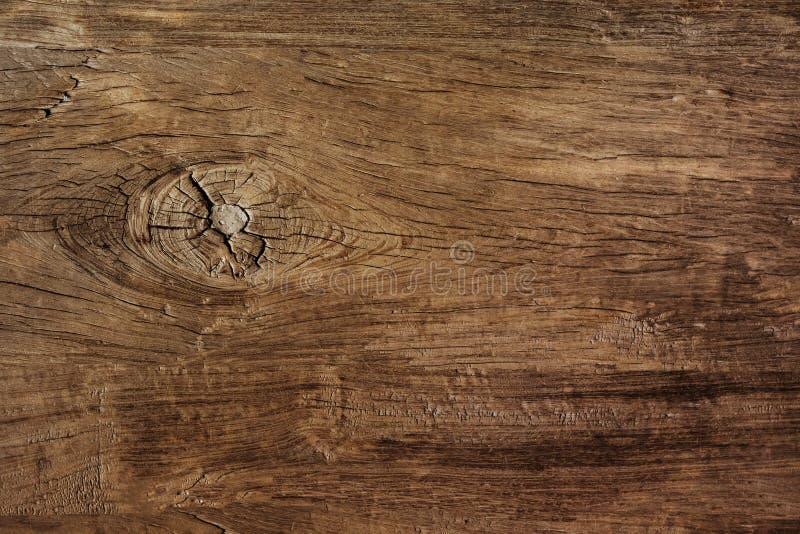 Struttura di uso del legno della corteccia come sfondo naturale fotografia stock libera da diritti
