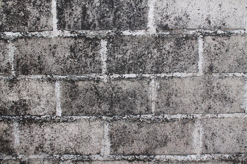 Struttura di vecchia costruzione d'annata, concetto del mattone di tecnica di lerciume di progetto immagine stock