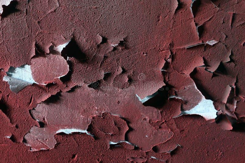 Struttura di vecchia pittura rossa su un muro di cemento un muro di cemento Gesso scheggiato sulla parete sopravvissuta con le cr fotografie stock libere da diritti