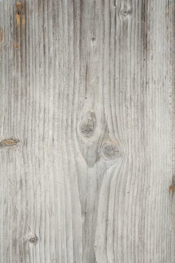 Struttura di vecchio albero con le crepe longitudinali, superficie di legno stagionato antico, fondo astratto fotografie stock libere da diritti