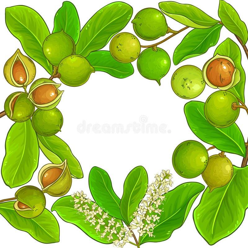 Struttura di vettore della noce di macadamia illustrazione di stock