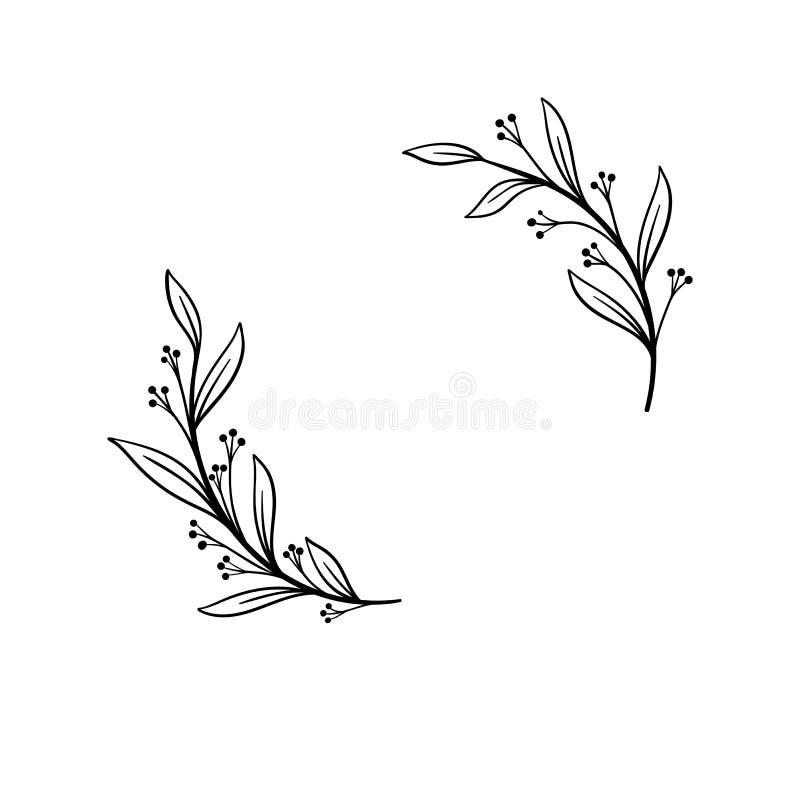 Struttura disegnata a mano di vettore Corona floreale con le foglie per nozze e la festa Elementi decorativi per il disegno Isola illustrazione vettoriale