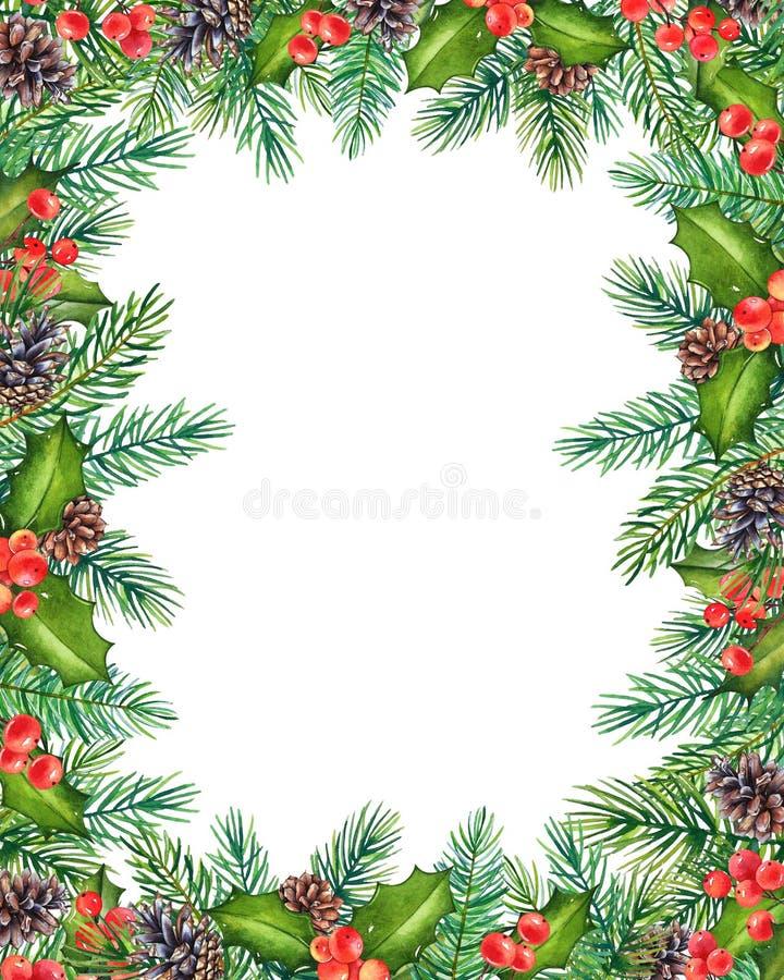 Struttura floreale di Natale decorativo con i rami dell'acquerello di agrifoglio con le bacche ed il pino con i coni isolati su b illustrazione di stock