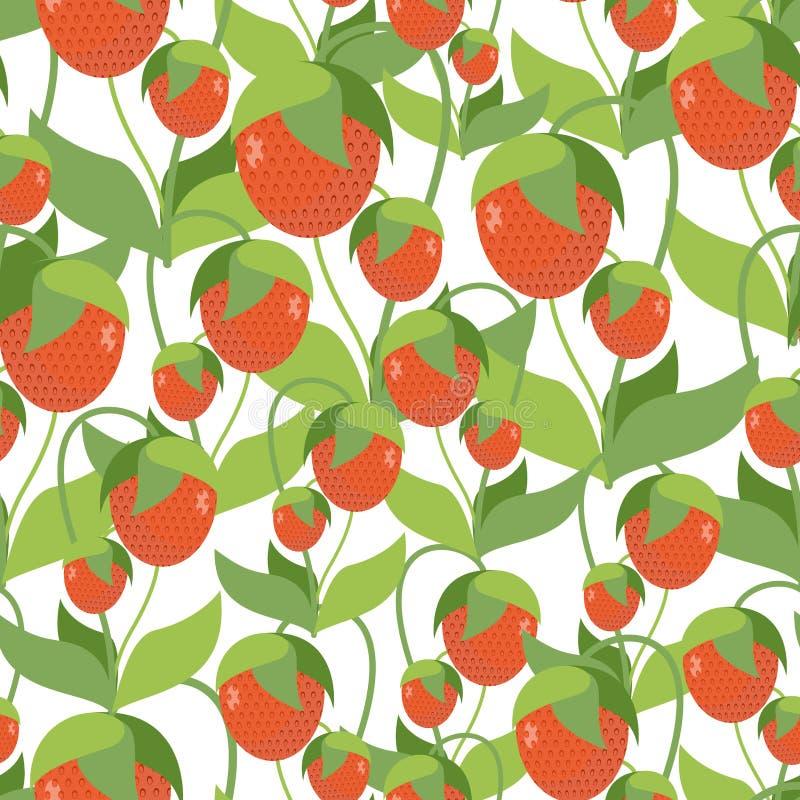 Struttura fruttata della fragola Modello senza cuciture di vettore di berrie rosso illustrazione di stock