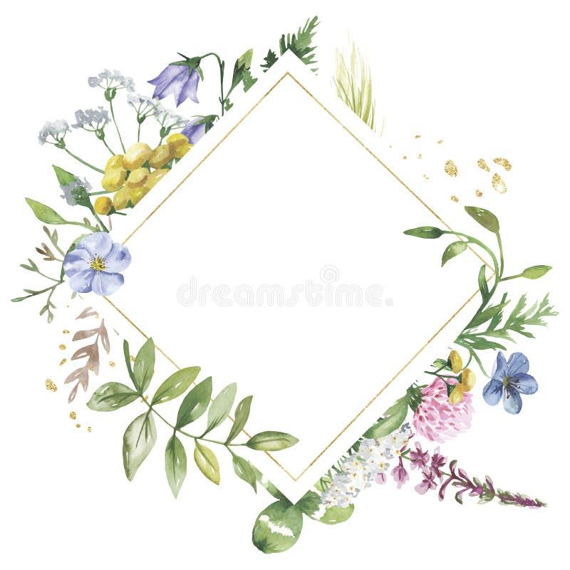 Struttura geometrica dorata con i wildflowers dell'acquerello Modello per il testo sotto forma di quadrato, cuore, cerchio, rombo illustrazione vettoriale