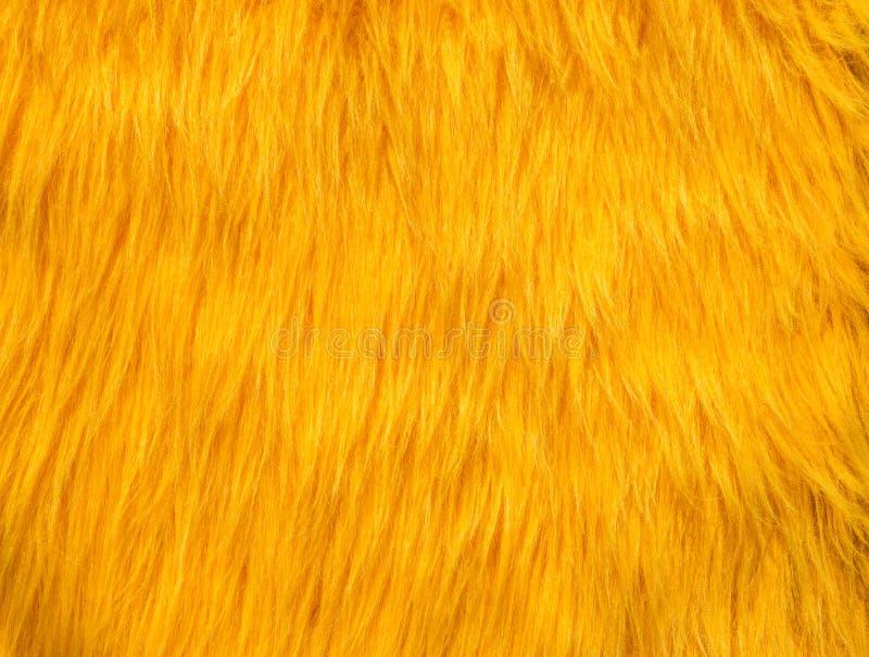 Struttura gialla dell'estratto della pelliccia fotografia stock