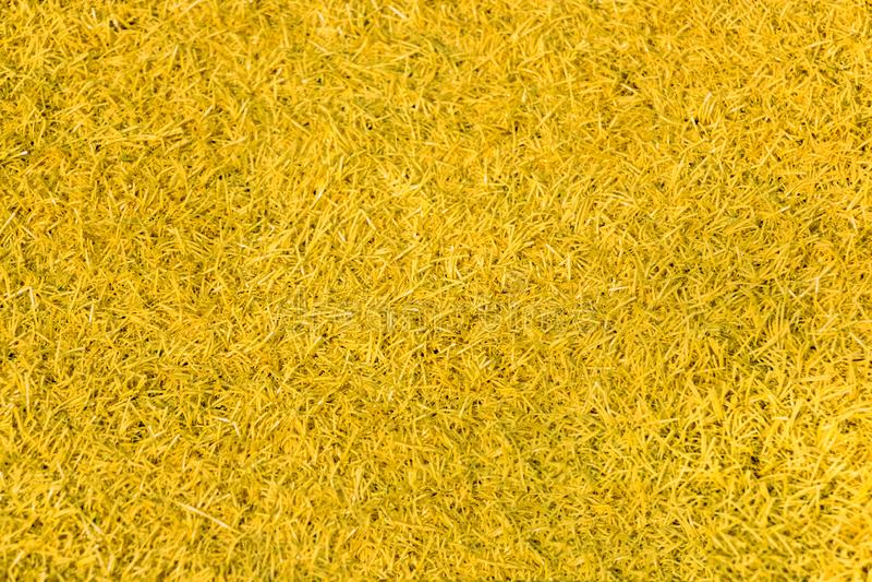 Struttura gialla della superficie del tappeto per fondo fotografia stock
