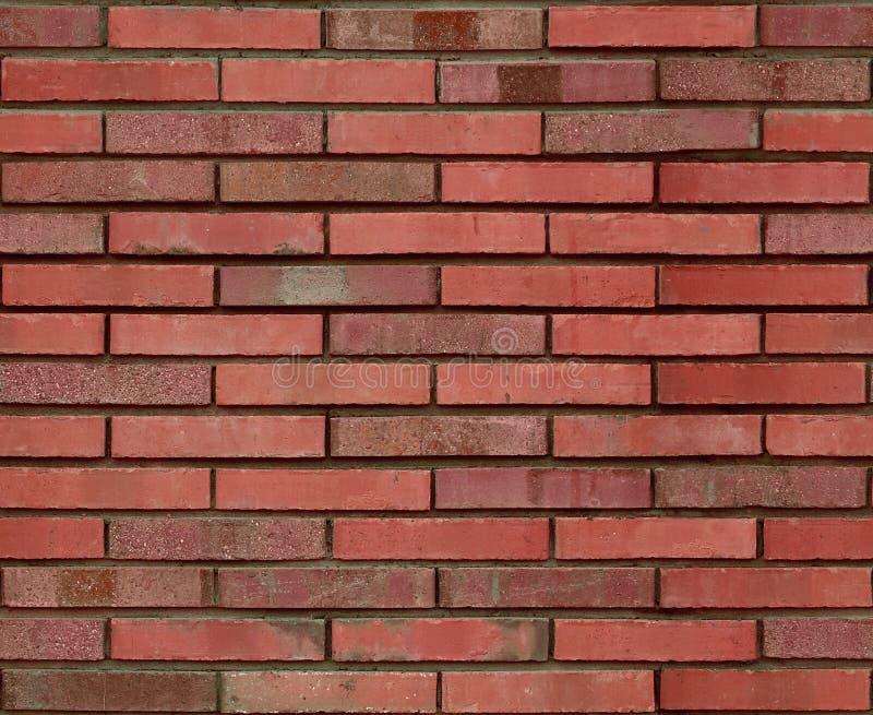 Struttura marrone-rosso senza cuciture del fondo del modello del muro di mattoni Fondo senza cuciture rosso del muro di mattoni M fotografia stock libera da diritti