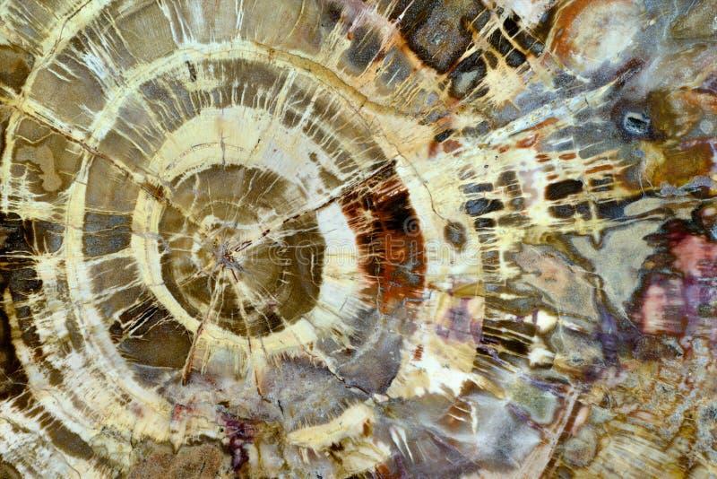 Struttura minerale astratta immagine stock