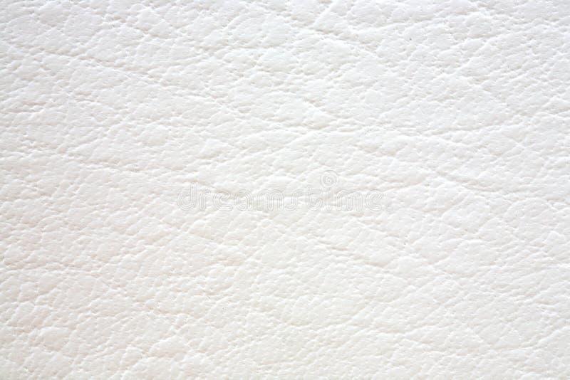 Struttura naturale del cuoio bianco fotografia stock libera da diritti