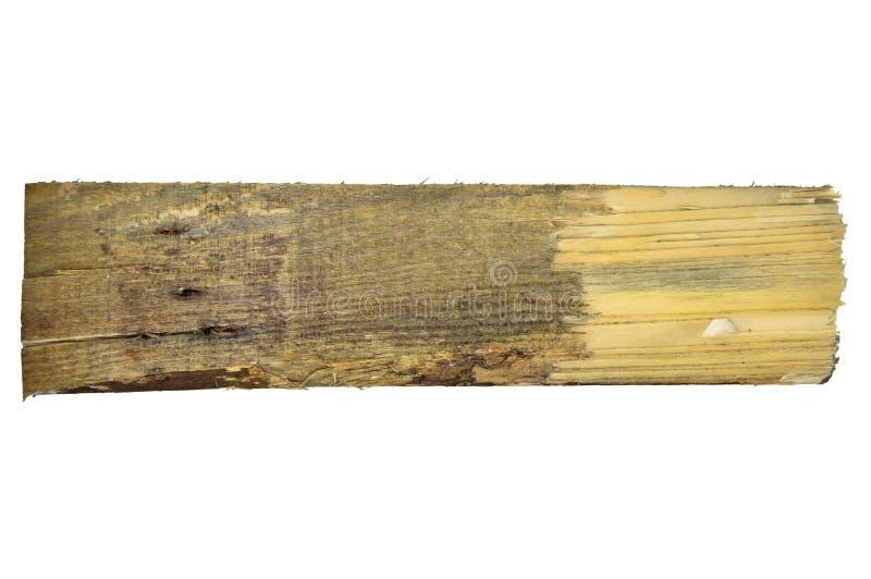 Struttura naturale della plancia di legno di pino Grano, copertura fotografia stock libera da diritti