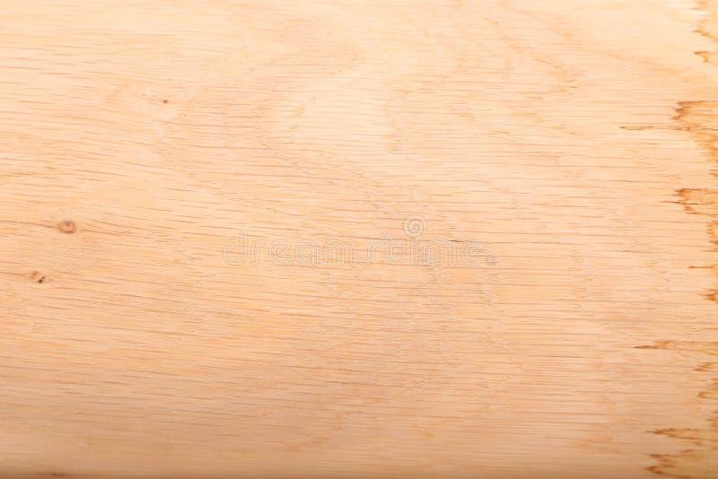 Struttura naturale di legno di quercia fotografia stock