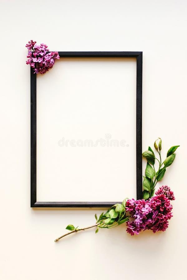 Struttura nera, fiori lilla su fondo bianco fotografia stock