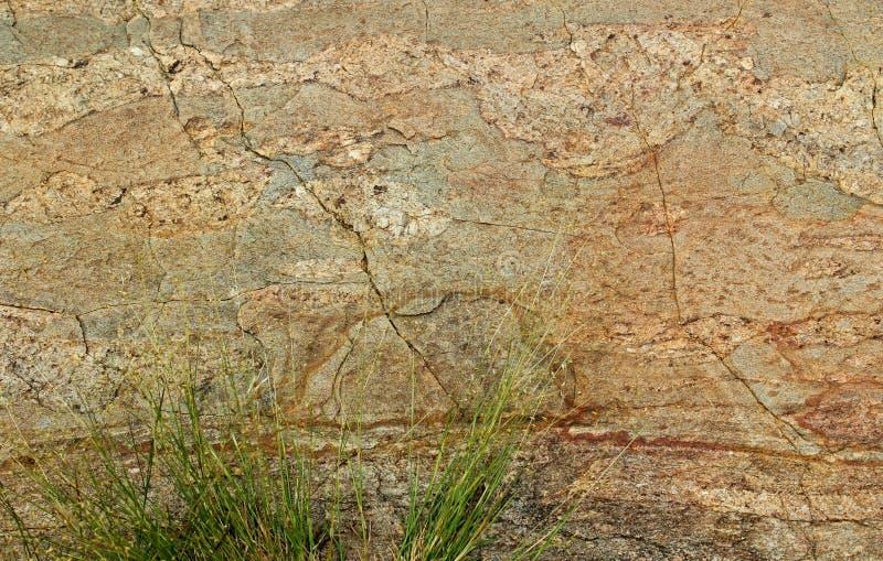 Struttura orizzontale molto piacevole di roccia incrinata con lo sfondo naturale di struttura dell'erba verde fotografia stock