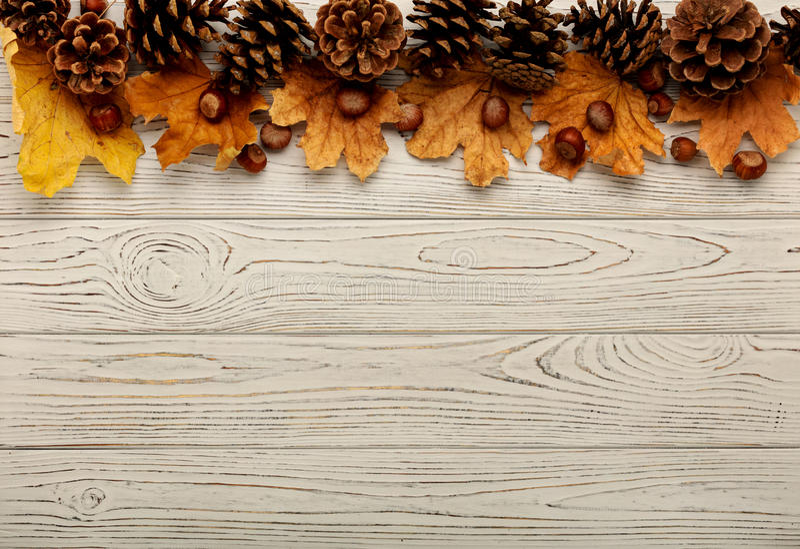 Struttura piana di disposizione delle foglie, dei coni e dei dadi di autunno su una parte posteriore di legno fotografia stock libera da diritti