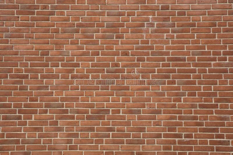 Struttura rossa del muro di mattoni con indicare grigio chiaro eccellente fotografia stock libera da diritti