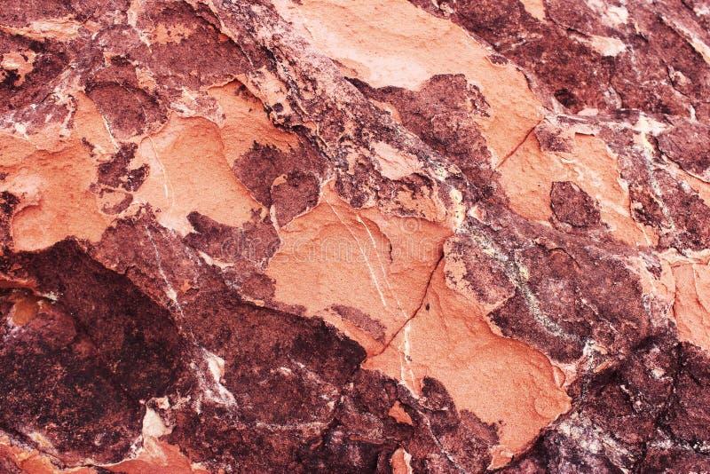 Struttura rossa della roccia sedimentaria struttura di pietra rustica rossa Fondo nave fotografie stock