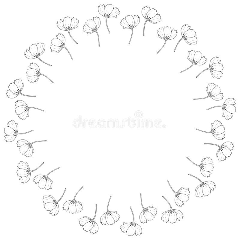 Struttura rotonda con i fiori in bianco e nero dell'universo su fondo bianco Struttura floreale isolata per la vostra progettazio royalty illustrazione gratis
